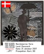 NSDK211017
