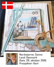NSDK291016