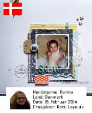 NSDK150214