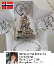 NSNO020618
