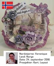 NSNO240916