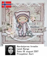 NSNO190817