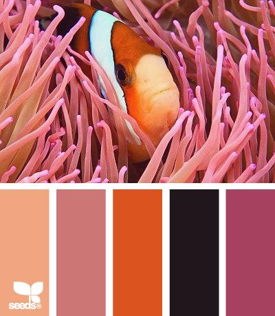 Design Seeds colour palette - UnderwaterHues