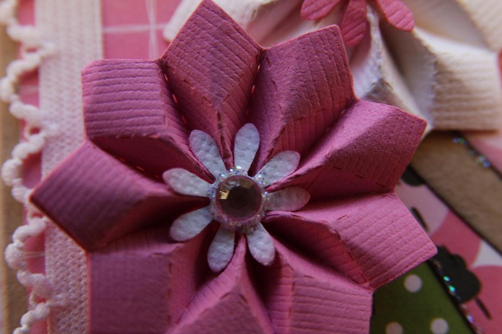 rosa blomma nära