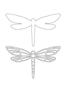 PKL_CBS_Dragonfly_large
